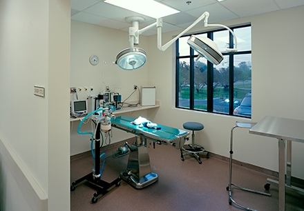 An exam room at the Oakland Veterinary Referral Services